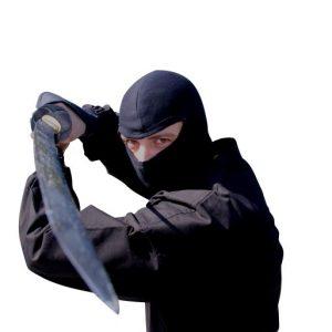 Pro Ninja Mask