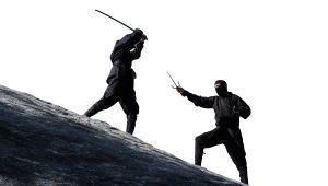 5 Common Myths about Ninjas Everyone Thinks are True