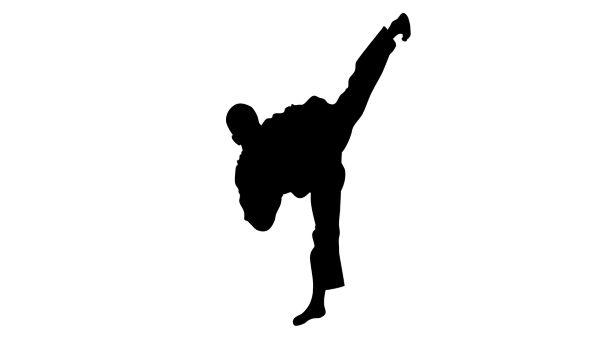 Legendary Ninja Profiles Ukifune Jinnai - The Ultimate Ninja Assassin