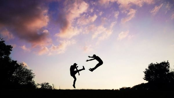 Tai Jitsu The Unarmed Combat Art of the Ninja