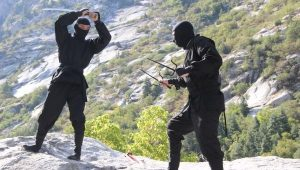 The Legendary Ninja Battle of the Tensei-Iga War
