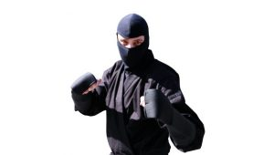 Myths about Ninjas that People Believed