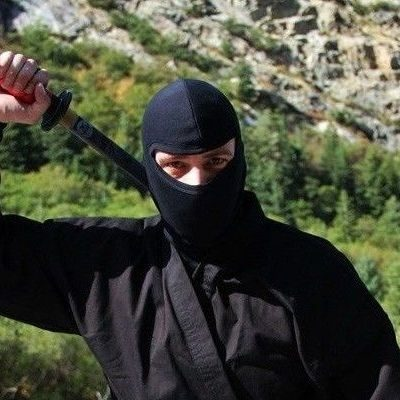 professional ninja mask